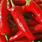 Pfefferspray aus Paprika